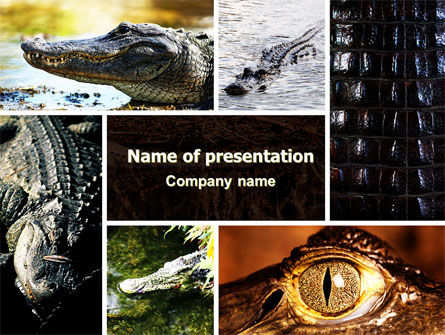 Animals and Pets: Cayman PowerPoint Template #06484