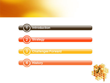 Beehive PowerPoint Template, Slide 3, 06490, Nature & Environment — PoweredTemplate.com