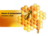 Nature & Environment: Beehive PowerPoint Template #06490