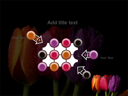 Colorful Tulips PowerPoint Template Slide 10