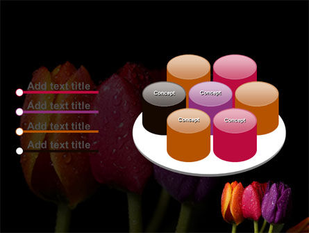Colorful Tulips PowerPoint Template Slide 12
