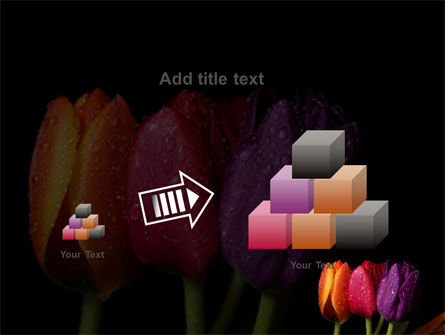 Colorful Tulips PowerPoint Template Slide 13