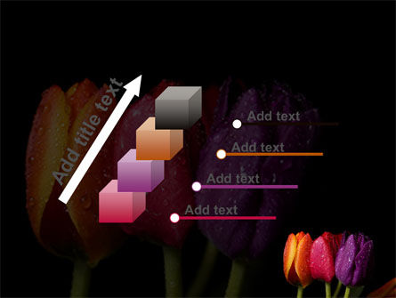 Colorful Tulips PowerPoint Template Slide 14