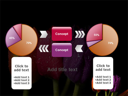 Colorful Tulips PowerPoint Template Slide 16