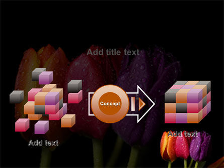 Colorful Tulips PowerPoint Template Slide 17