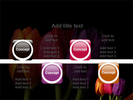 Colorful Tulips PowerPoint Template Slide 18
