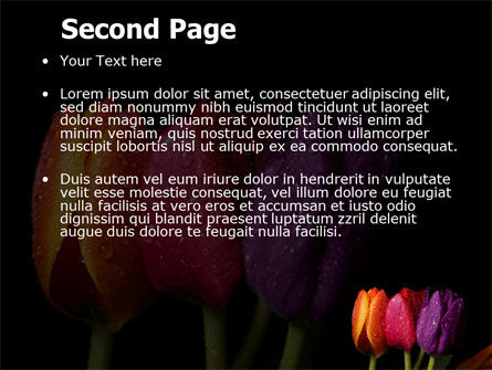 Colorful Tulips PowerPoint Template Slide 2
