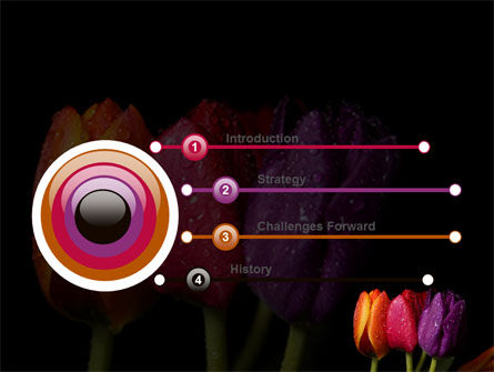 Colorful Tulips PowerPoint Template Slide 3