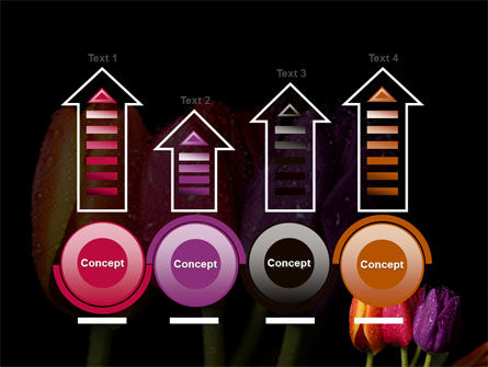 Colorful Tulips PowerPoint Template Slide 7