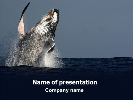 Animals and Pets: Humpback Whale PowerPoint Template #06523
