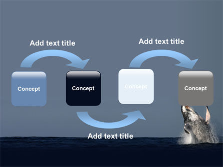 Humpback Whale PowerPoint Template, Slide 4, 06523, Animals and Pets — PoweredTemplate.com