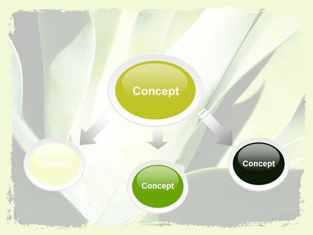 Lily Petals PowerPoint Template, Slide 4, 06551, Nature & Environment — PoweredTemplate.com