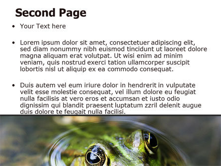 Marsh Frog PowerPoint Template, Slide 2, 06553, Animals and Pets — PoweredTemplate.com
