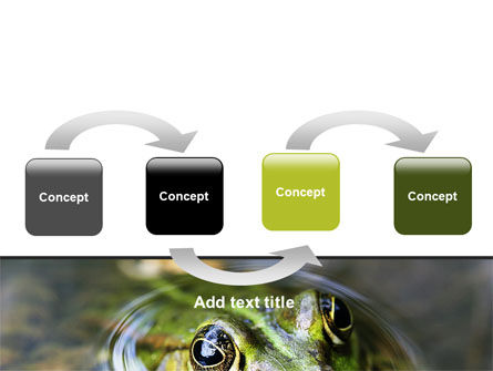 Marsh Frog PowerPoint Template, Slide 4, 06553, Animals and Pets — PoweredTemplate.com