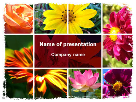 Garden Flowers PowerPoint Template, 06562, Agriculture — PoweredTemplate.com