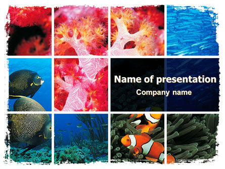 Sea Life PowerPoint Template, 06578, Nature & Environment — PoweredTemplate.com