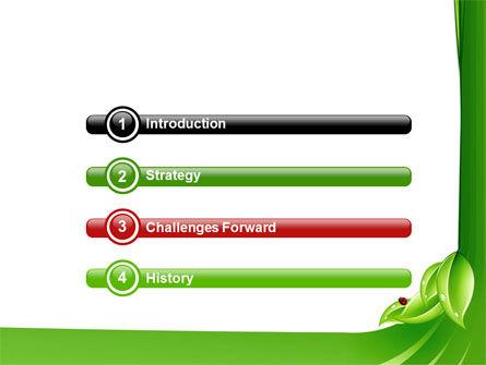 Ladybird PowerPoint Template, Slide 3, 06582, Nature & Environment — PoweredTemplate.com