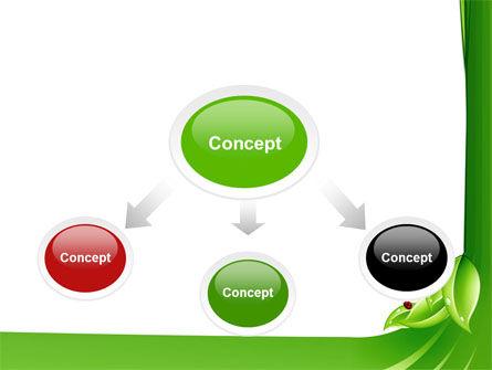 Ladybird PowerPoint Template, Slide 4, 06582, Nature & Environment — PoweredTemplate.com