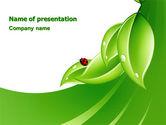 Nature & Environment: Ladybird PowerPoint Template #06582