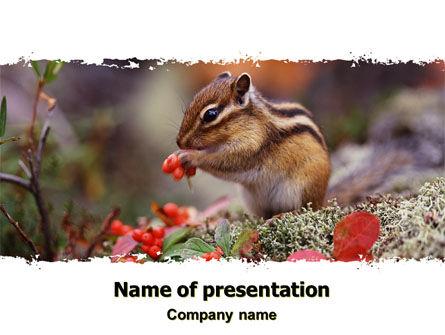 Chipmunk Free PowerPoint Template, 06597, Nature & Environment — PoweredTemplate.com