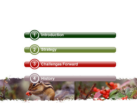 Chipmunk Free PowerPoint Template, Slide 3, 06597, Nature & Environment — PoweredTemplate.com