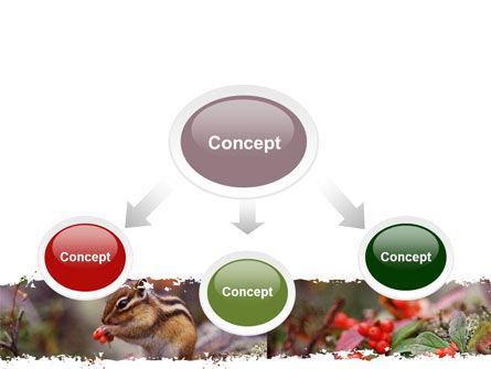 Chipmunk Free PowerPoint Template, Slide 4, 06597, Nature & Environment — PoweredTemplate.com