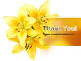 Yellow Lilies PowerPoint Template#20