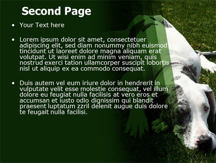 Dane PowerPoint Template, Slide 2, 06622, Animals and Pets — PoweredTemplate.com