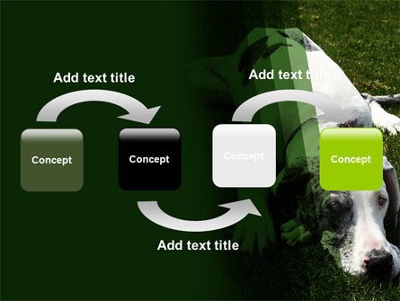 Dane PowerPoint Template, Slide 4, 06622, Animals and Pets — PoweredTemplate.com