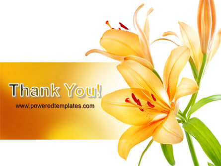 Yellow Lily PowerPoint Template Slide 20