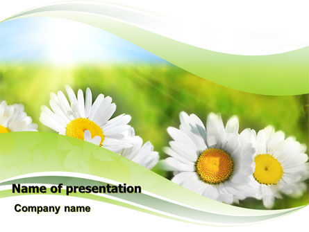 Holiday/Special Occasion: Camomile In The Fields PowerPoint Template #06664