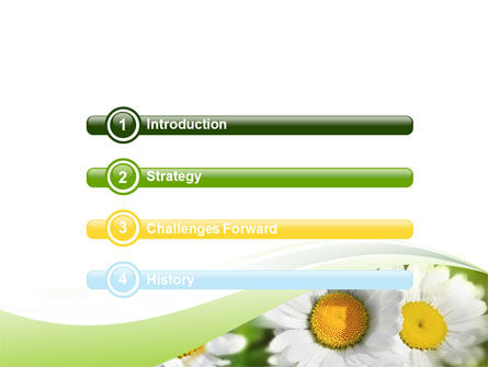 Camomile In The Fields PowerPoint Template Slide 3