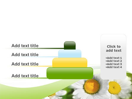 Camomile In The Fields PowerPoint Template Slide 8