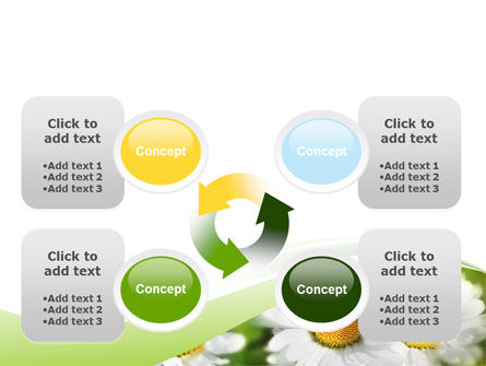 Camomile In The Fields PowerPoint Template Slide 9