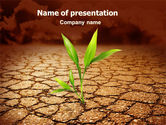 Nature & Environment: Survival In Desert PowerPoint Template #06680