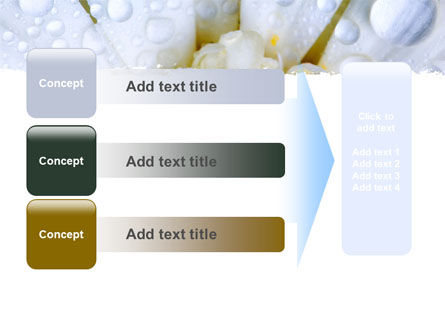 Camomile in Dew PowerPoint Template Slide 12
