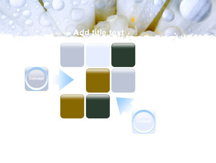 Camomile in Dew PowerPoint Template Slide 16