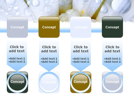 Camomile in Dew PowerPoint Template Slide 18