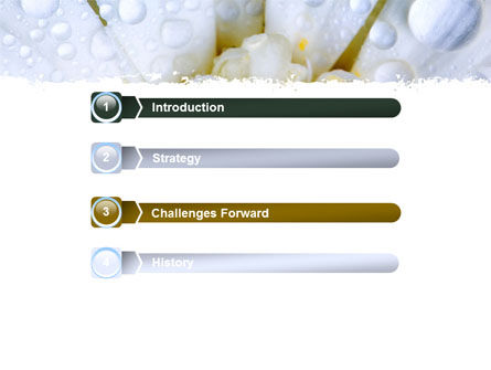 Camomile in Dew PowerPoint Template Slide 3