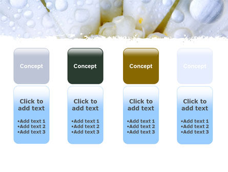 Camomile in Dew PowerPoint Template Slide 5