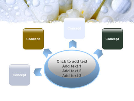 Camomile in Dew PowerPoint Template Slide 7
