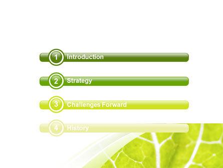 Leaf Texture PowerPoint Template, Slide 3, 06705, Nature & Environment — PoweredTemplate.com