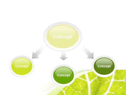 Leaf Texture PowerPoint Template, Slide 4, 06705, Nature & Environment — PoweredTemplate.com