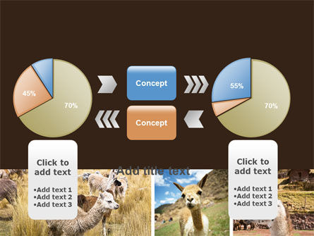 Free Lama PowerPoint Template Slide 16