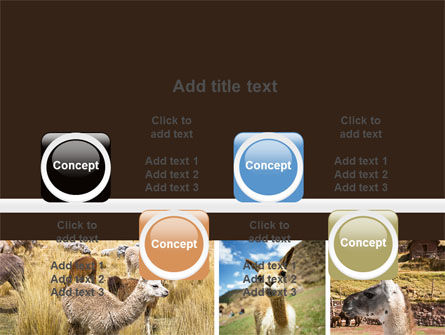 Free Lama PowerPoint Template Slide 18