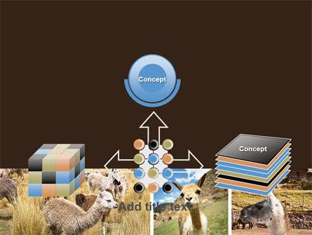Free Lama PowerPoint Template Slide 19