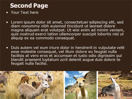 Lama Free PowerPoint Template, Slide 2, 06716, Agriculture — PoweredTemplate.com