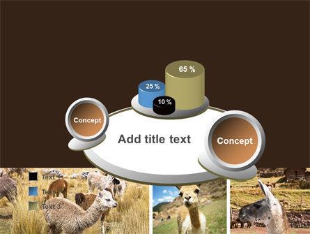 Free Lama PowerPoint Template Slide 6