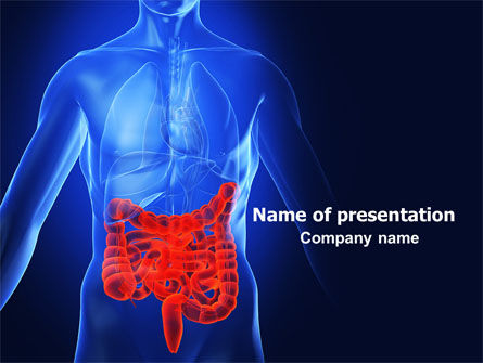 Medical: Intestines PowerPoint Template #06738