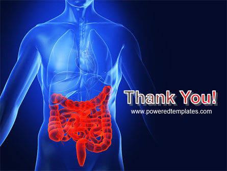 Intestines PowerPoint Template Slide 20